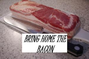 bring home the bacon IDIOM
