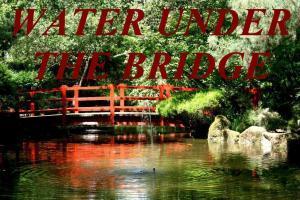 WATER UNDER THE BRIDGE IDIOM